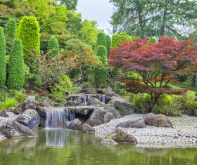 Beautiful Japanese garden Stock Photo 03