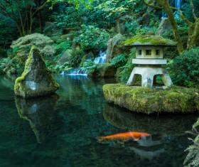 Beautiful Japanese garden Stock Photo 05