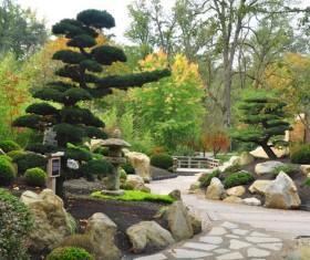 Beautiful Japanese garden Stock Photo 06