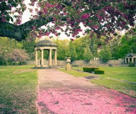 Beautiful Japanese garden Stock Photo 07
