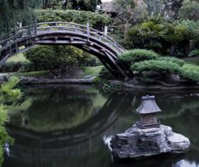 Beautiful Japanese garden Stock Photo 09