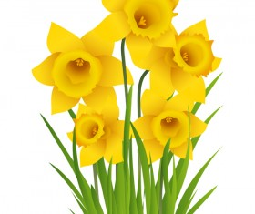 Beautiful yellow flower vectors material