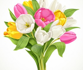 Bouquet of white, pink and yellow tulips vector