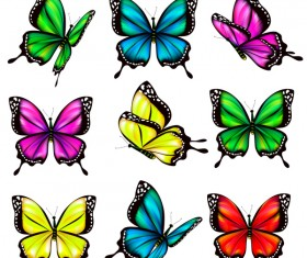 Colorful butterfies vector illustration set 05