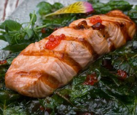 Different practices salmon dishes Stock Photo 02