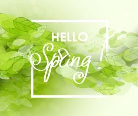 Elegant green leaves spring background vector 02
