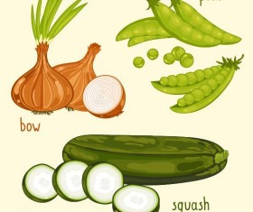 Fresh vegetables with name vector illustration 07