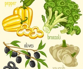 Fresh vegetables with name vector illustration 11