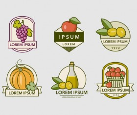 Fruity Labels Vintage design vector