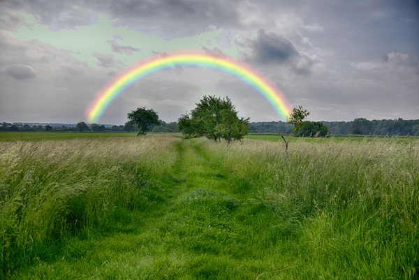 Grass sky after the rain Rainbow Bridge Stock Photo free download