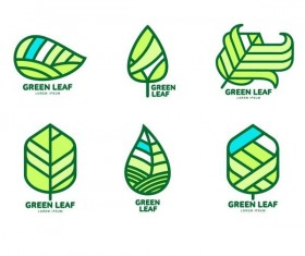 Green leaf logos design vector