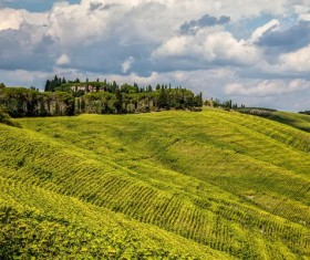 Hillside beautiful terraces Stock Photo