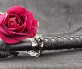 Japanese katana and red chrysanthemum Stock Photo
