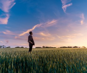 Man standing alone on rice field Stock Photo