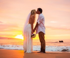 Newly married couples Stock Photo 04