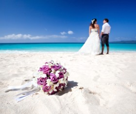 Newly married couples Stock Photo 05