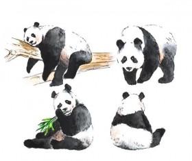 Panda watercolor drawn vector