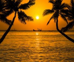 Photograph beautiful sunset Stock Photo 13