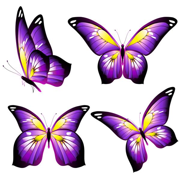 Purple beautiful butterfies vector