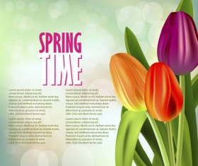 Spring colored tulips background vector