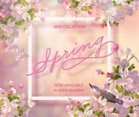 Spring flower background with frame design vector