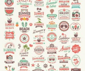 Summer labels and typography and badge vectors set
