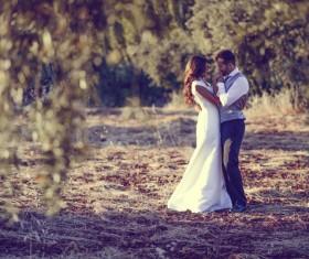 Sweet newlywed couple photos Stock Photo 01
