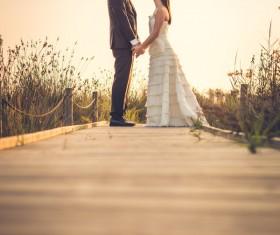 Sweet newlywed couple photos Stock Photo 02