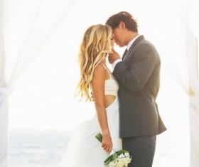 Sweet newlywed couple photos Stock Photo 03