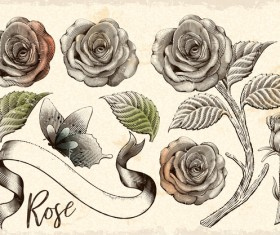 Vintage flower with ribbon and butterfly vector