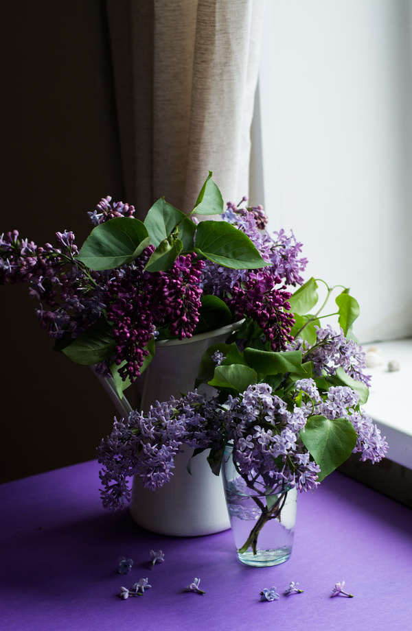 Violet flowers decoration in room Stock Photo