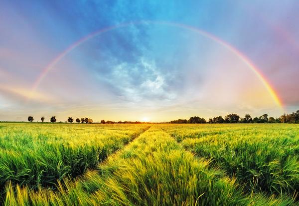 Wilderness beautiful rainbow Stock Photo 01