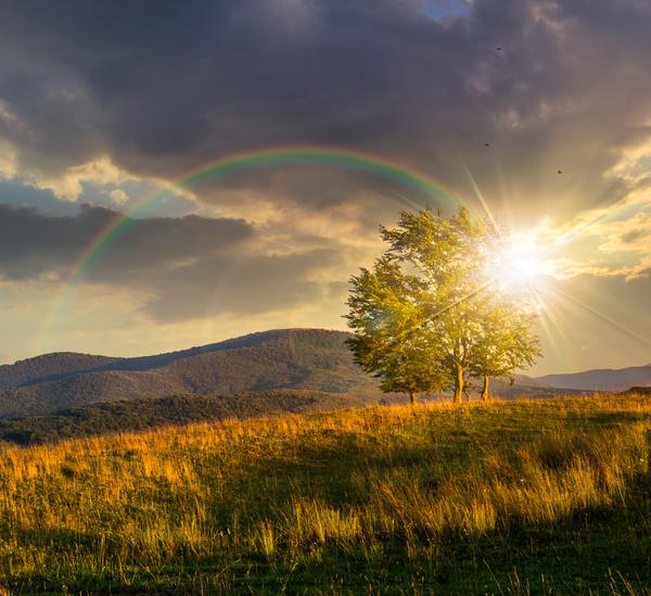 Wilderness beautiful rainbow Stock Photo 03