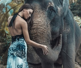 Woman and elephant live in harmony Stock Photo 01