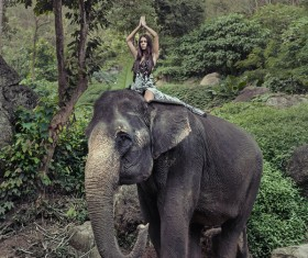 Woman and elephant live in harmony Stock Photo 07