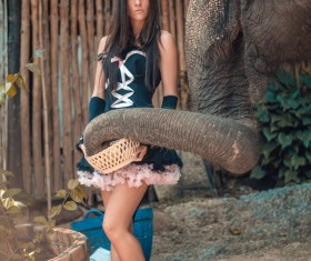 Woman and elephant live in harmony Stock Photo 08