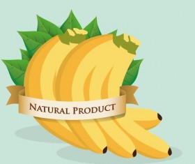 natural banana label vector