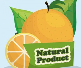 natural orange label vector