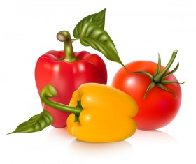 pepper with tomato vector 01