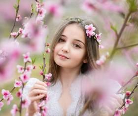 Beautiful lassock like a flower Stock Photo