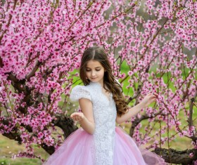 Beautiful little princess and cherry blossom Stock Photo 02