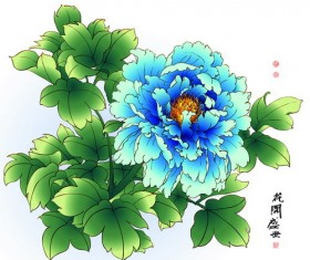 Chinese peony hand drawing vectors 03