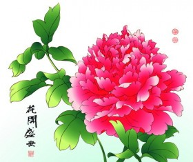 Chinese peony hand drawing vectors 04