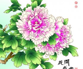 Chinese peony hand drawing vectors 05