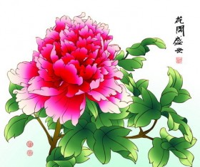 Chinese peony hand drawing vectors 08