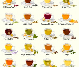 Different tea vector set 01