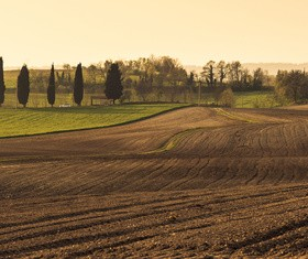 Driving tractor turn up the soil Stock Photo 01