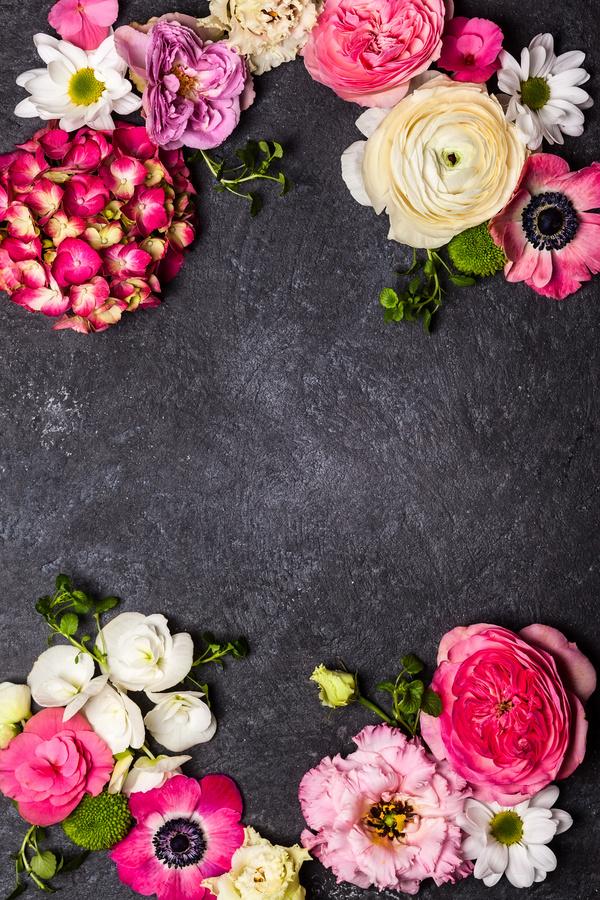 Flowers on black Background Stock Photo 02