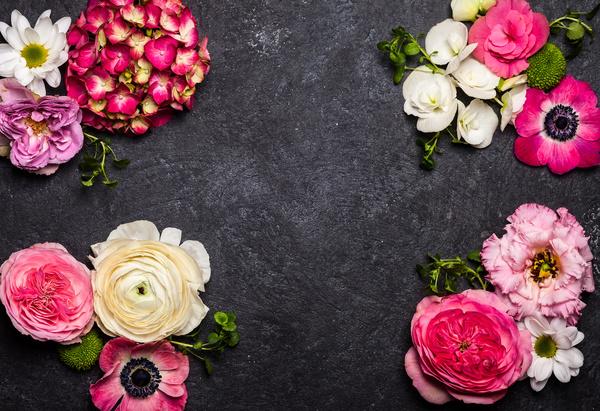 Flowers on black Background Stock Photo 06
