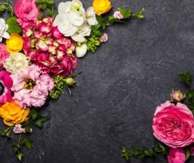 Flowers on black Background Stock Photo 07